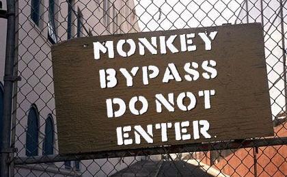 MONKEY BYPASS